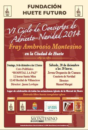 Concierto2014